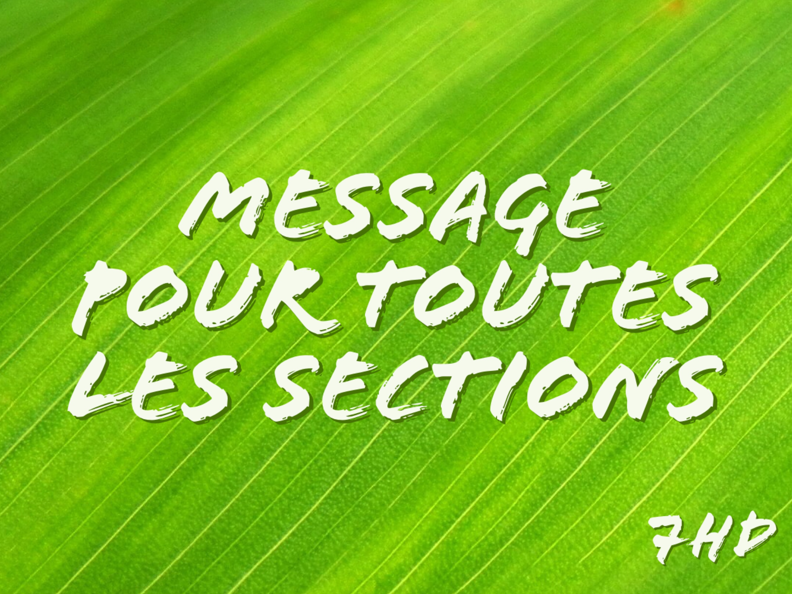 toutes-sections2